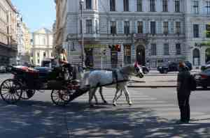 The essence of Vienna, a carriage and pair on Universitats adjacent to the Vienna University.